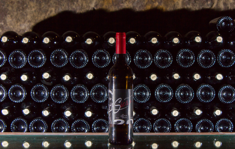Nos vamos de vinos con Bodegas Siesto
